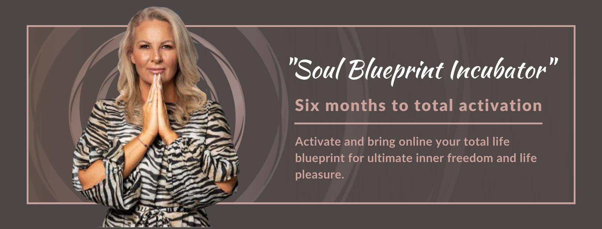 Soul Blueprint Incubator
